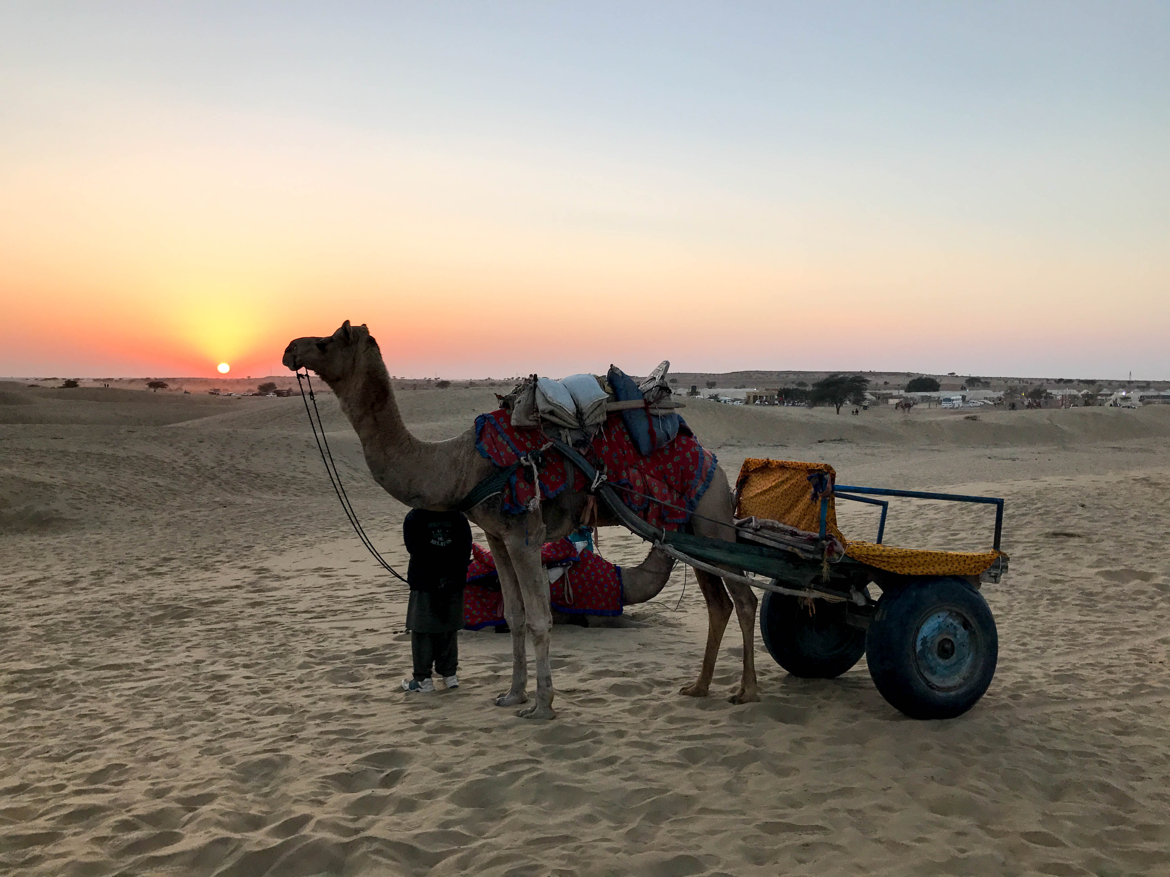 Camel Ride at SAM Sand dunes